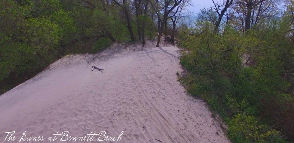 Bennett Beach Sand Dunes